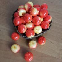 Яблоки искусственные (5шт)